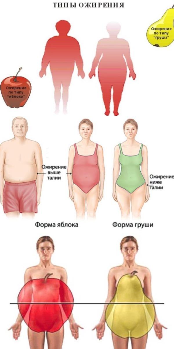 Что местоположение жира на вашем теле говорит о вас — и что с этим делать.
