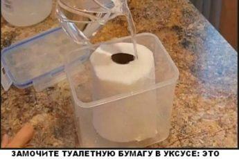 Замочите туалетную бумагу в уксусе: это станет решением многих проблем по дому!